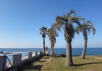 目の前は相模湾。海の向こうには富士山がうっすらと…。