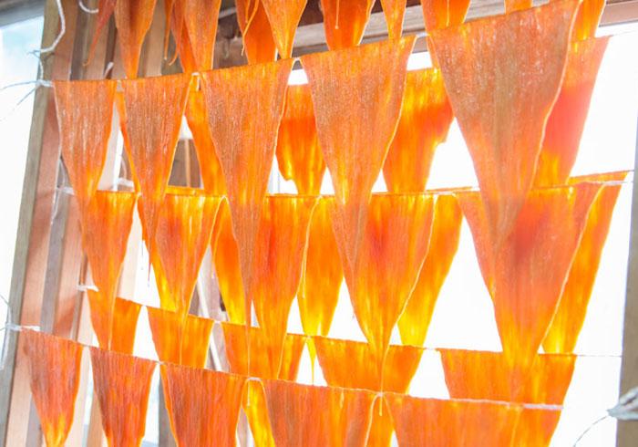 【アートレポート】金沢21世紀美術館「島袋道浩:能登」くちこづくり