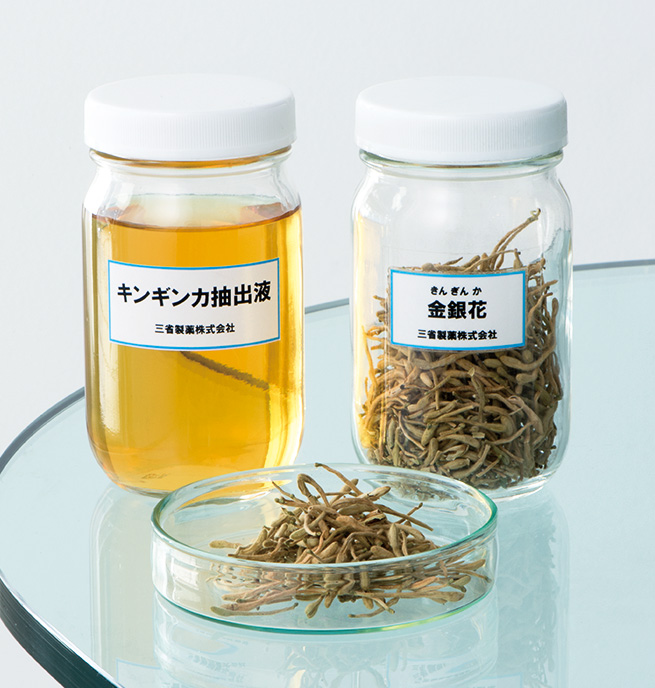 キンギンカはスイカズラの花蕾を乾燥させた生薬の一種。名前は花弁の色が白から黄色に変わることが由来。抽出液は優れた抗炎症効果がある。