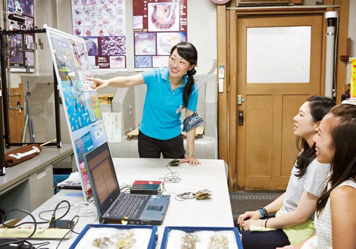 1.真珠の養殖を学ぶ 真珠の養殖は、核入れに使うアコヤ貝を育てるところからスタート! さらに核入れをして、浜揚げ(真珠を貝から取り出すこと)まで、およそ4年、手間ひまかけて育てられている。