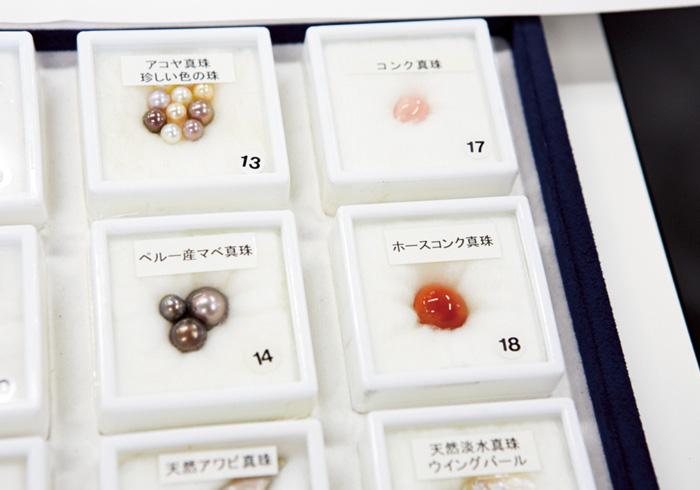 2. 真珠の種類を知る 貝殻の外側の層を取り除くと、内面の部分はキラキラと輝いている。この輝きこそ真珠層と呼ばれるもの。真珠にはアコヤ真珠のほかにも種類がある。