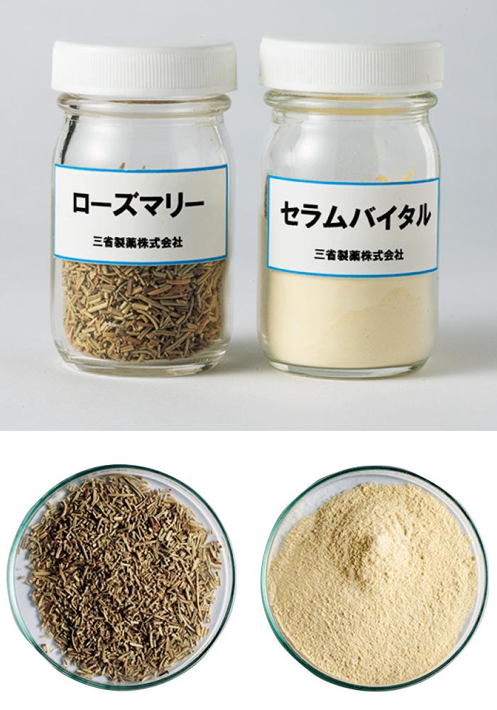 若返りの妙薬といわれた伝説の植物、ローズマリー(左)から、シワに効く成分だけを抽出して粉末化したセラムバイタル(右)。微量しかとれない貴重な成分だ。