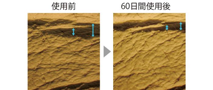セラムバイタル配合のクリームを60日間使用した肌のレプリカ。シワの幅が狭く、浅くなっている。肌全体もふっくらとなめらかに。