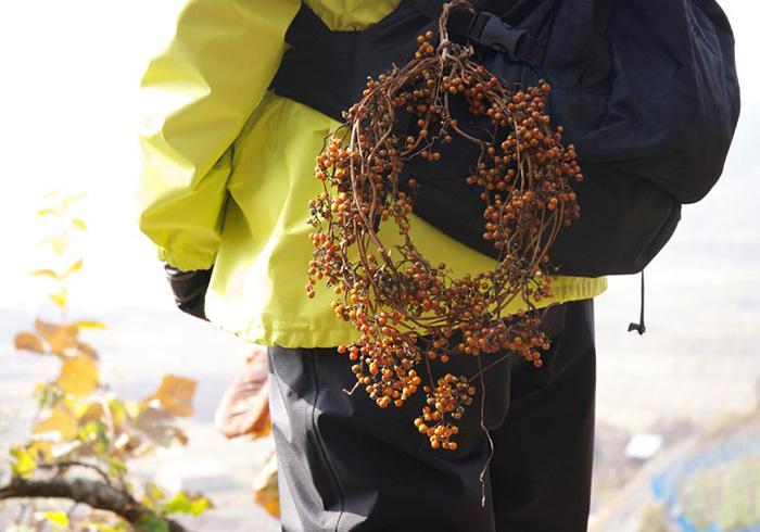 【貝印×コロカル】植生を楽しく学ぶ山歩きツアー YAMAMORI PROJECT 後編