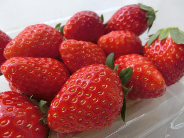 動脈硬化予防には葉酸が多く含まれている食材を。イチゴはもう、毎日食べてしまいます。しなやかな血管を想像しながら!