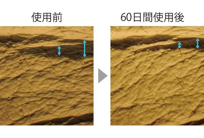 セラムバイタル配合のクリームを60日間使用した肌のレプリカ。シワの幅が狭く、浅くなっている。肌全体もふっくらとなめらかに。(三省製薬調べ)