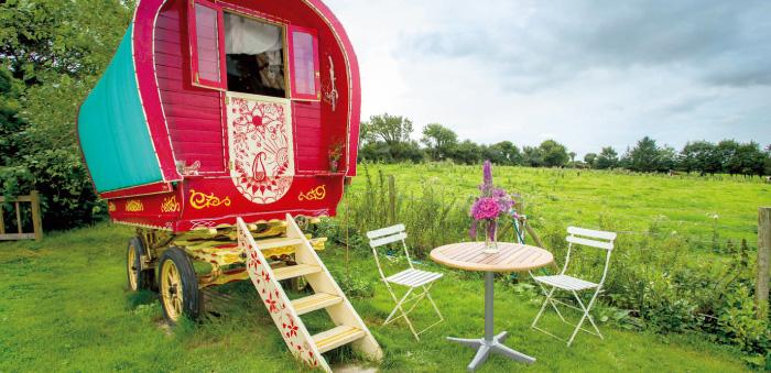 Bow Top Elle Gypsy Wagon Cornwall 牧草地に置かれた荷馬車