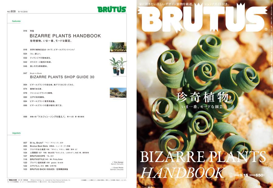 珍奇植物 brutus no 808 brutus マガジンワールド