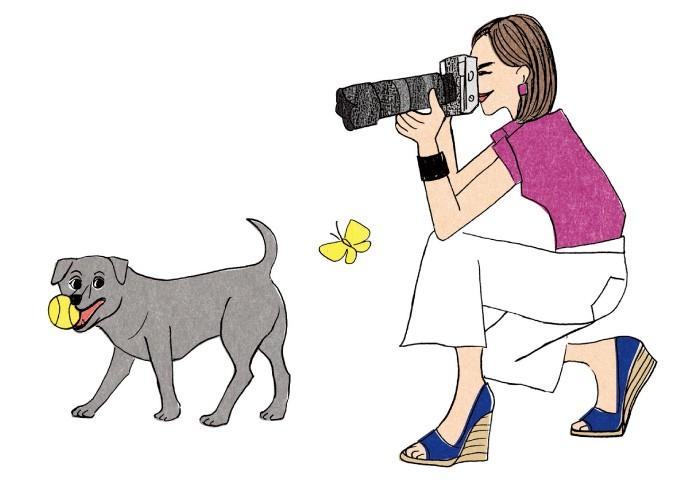 Take a Picture! ペットやお料理、旅先で出会った景色を写真におさめて満足してたらもったいない。その写真、ストックフォトに投稿しましょう。ただしスマホは不可。デジカメ使用が必須です。