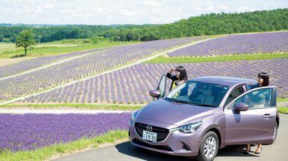 美瑛・富良野を車で巡る、美食と自然を満喫する旅へ。