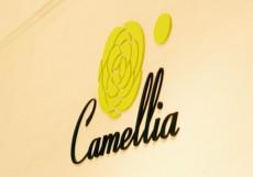 Bar & Café 「Camellia」