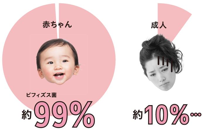 ビフィズス菌… 赤ちゃん:約99%、成人:約10%