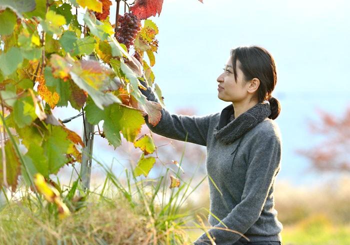 甲州ワインを世界へ送る。ワイン醸造家・三澤彩奈さん
