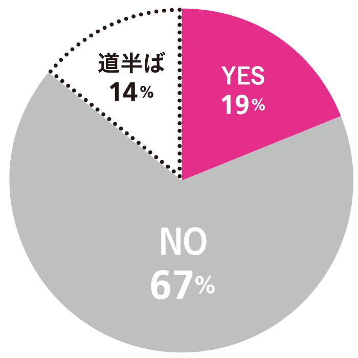 Q. その夢は叶いましたか? A.YES:19% NO:67% 道半ば:14%