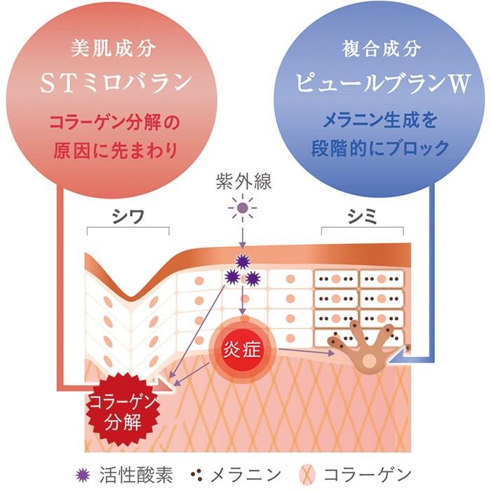 STミロバランは、コラーゲン分解を阻止し、シワを予防。ピュールブランWは、メラノサイト内でのメラニン生成にストップをかける。