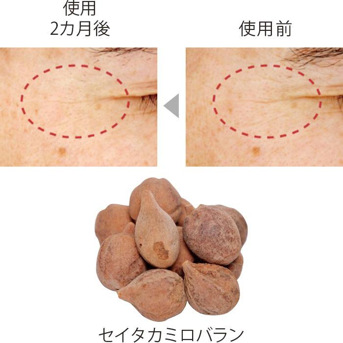 STミロバランはアーユルヴェーダで用いられる植物、セイタカミロバランから抽出したエキス。実験でシワを改善することが明らかに。