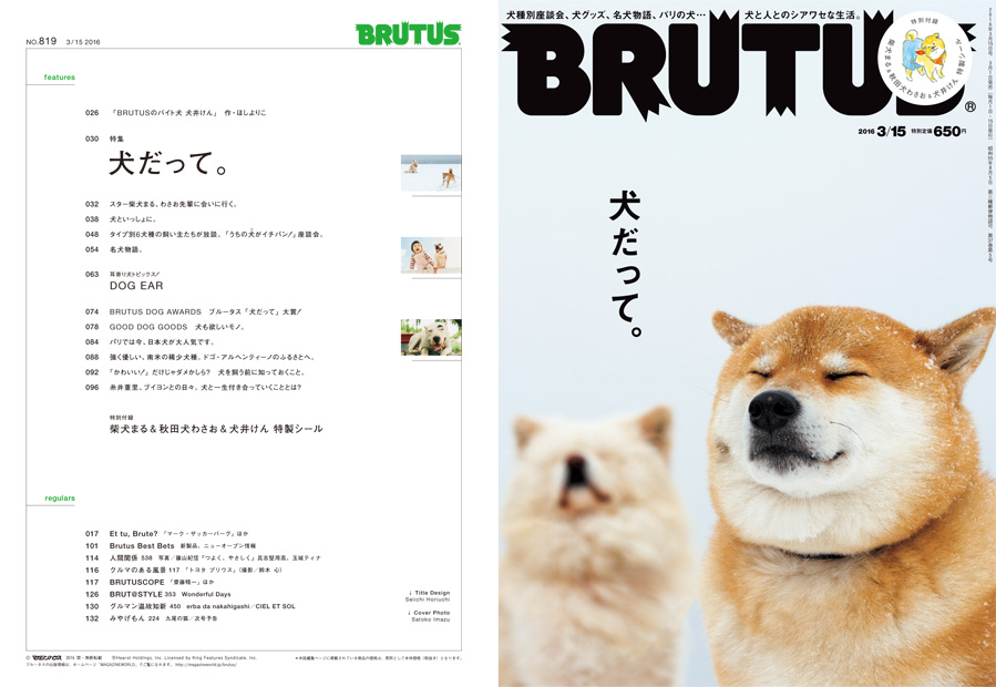 犬だって brutus no 819 brutus マガジンワールド