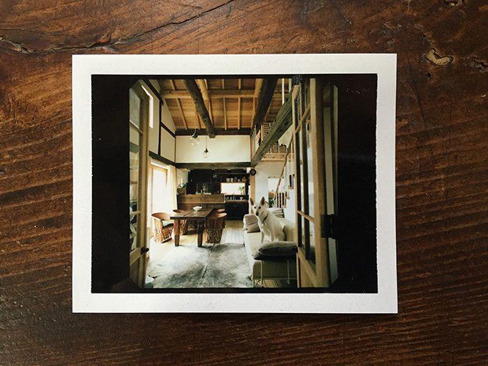 〈スターネット〉の馬場浩史さんにはとてもお世話になった。2009年の表紙、星恵美子さんの家の撮影。2013年には亡くなる3ヶ月前に、病をおして(でも、そんなふうには微塵も見せず)、ご自宅も撮影させてもらった。馬場さんは、僕ら取材陣の後押しをいつもしてくれた。そして今回は、馬場さんの薫陶をずっと受けてきたはったえいこさんの家を取材した。馬場さんのセンスとこだわりを身近で見てきた彼女が作った家は、優しい空間なのだけれど、一分の隙もない、だめなものが何もない空間。居住空間学史上でも、最高部類にはいるスゴい家でした。馬場さんの遺伝子はこうやって、脈々と続いていくんだと。