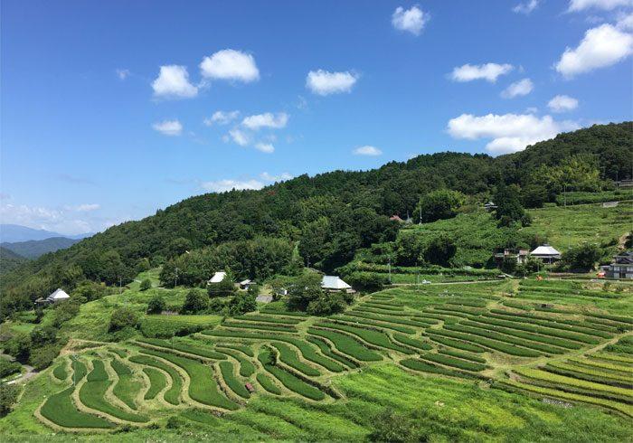 47都道府県『全国、心地いいビールスポット』随時公開中です!