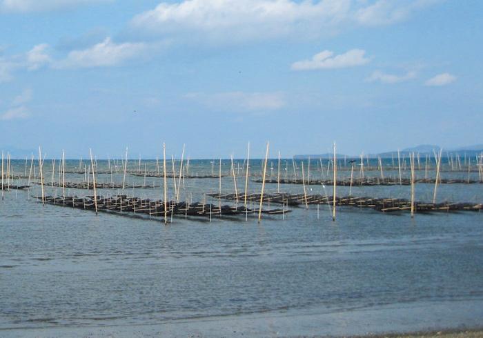 海の恵みを生かす養殖