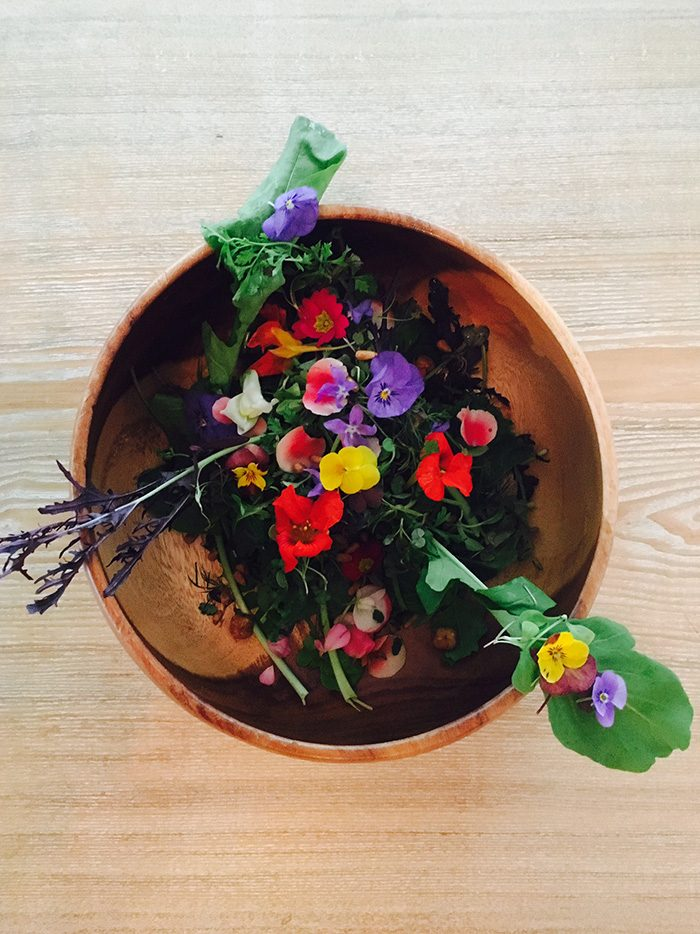 ※4 〈Restaurant Anis〉のお花のサラダ。数十種類の花と野菜がこの一皿に!