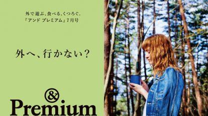 &Premium No. 31