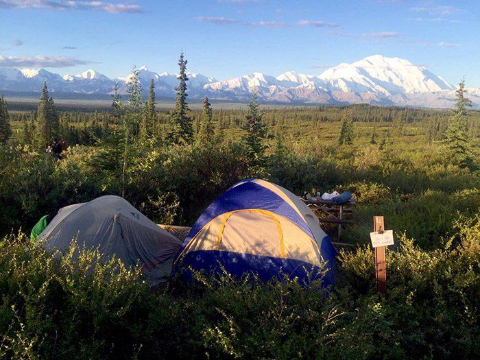 1泊2日の弾丸ロケだった犬井ケンくんのデナリ国立公園。テントから見たデナリ山の風景はケンくんの中に眠っていた野生を呼びさますほどの力を持っていました。くわしくは本編マンガでお楽しみください!