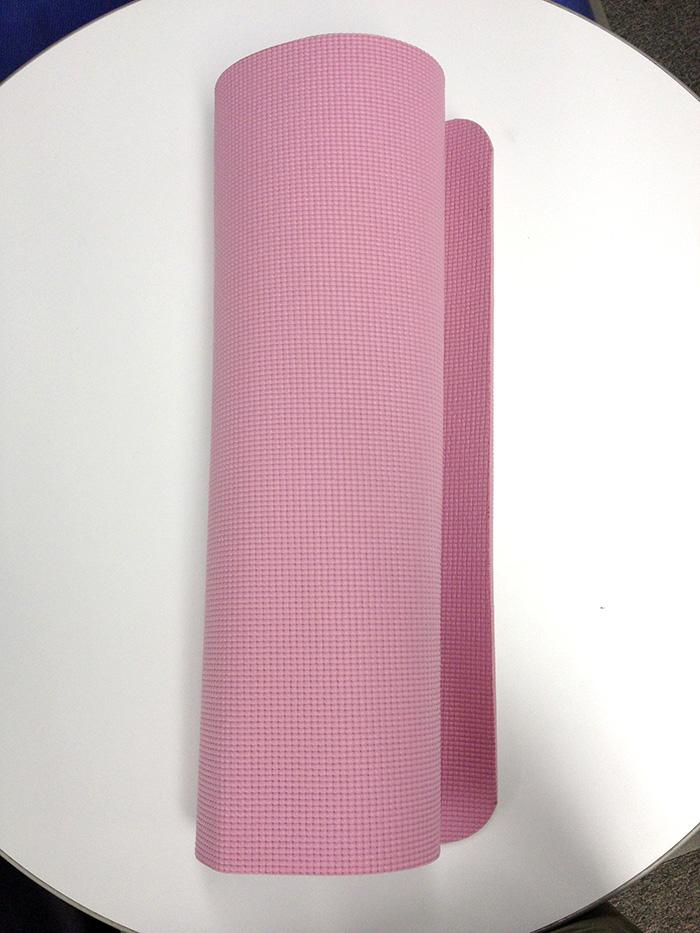 ちなみに使っていた色はピンク。1000円切っていたそうで。確かに一枚あると便利ですよね。フローリングでは特に。