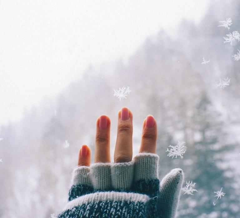 #新穂高ロープウェイ #雪の結晶