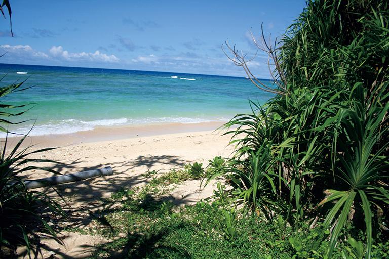 私にとっての楽園は、沖縄の暮らしの中で出会ういくつもの瞬間。