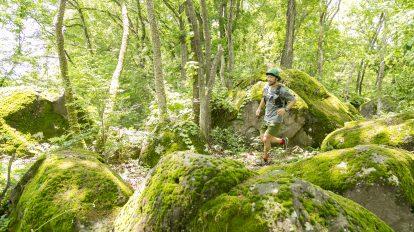Tarzan Trails GPSデータ[ほったらかし温泉トレイル] NO.721