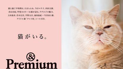 &Premium No. 45 試し読みと目次