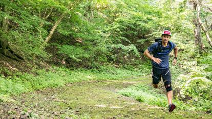 Tarzan Trails GPSデータ[奥多摩湖いこいの路] NO.726
