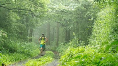 Tarzan Trails GPSデータ[芦ノ湖岸トレイル] NO.727