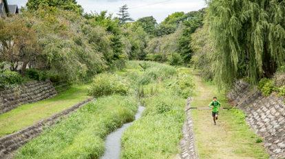 Tarzan Trails GPSデータ[野川源流トレイル] NO.730
