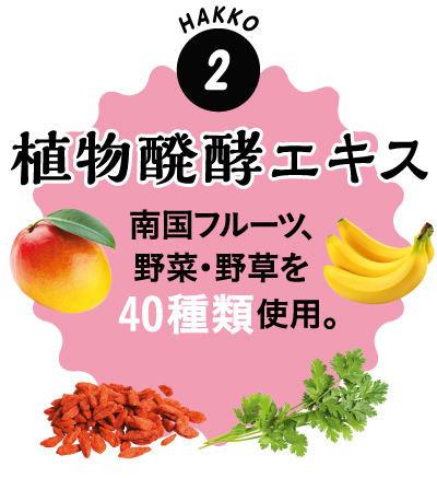 2.植物発酵エキス