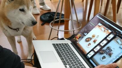 忠犬小次郎とともに、3日にわたるお料理撮影。 クロワッサン 編集部こぼれ話 No.969
