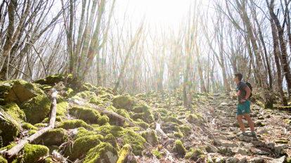 Tarzan Trails GPSデータ[井川自然の家トレイル] NO.740