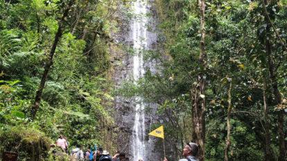 次のハワイ旅には、Hanako Hawaii Toursを! From Editors N …