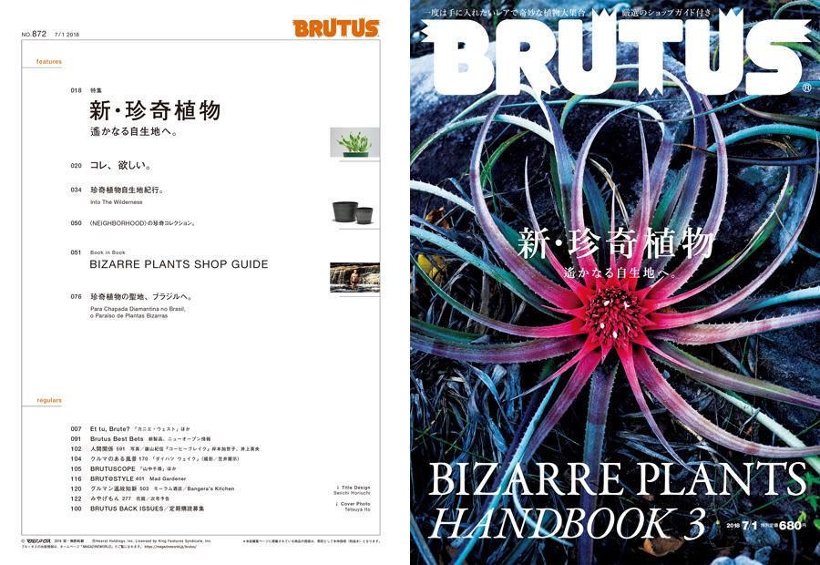 新 珍奇植物 brutus no 872 試し読みと目次 brutus マガジンワールド