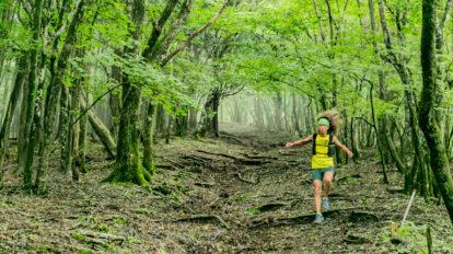 Tarzan Trails GPSデータ[UTMF/きらら〜石割山]一周トレイル NO.754