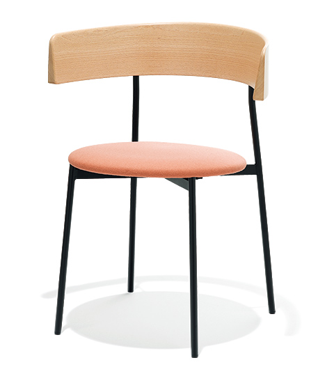 FEST colorful dining chair