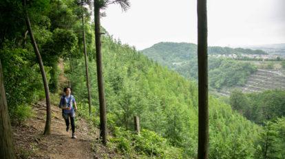 Tarzan Trails GPSデータ[南高尾山]トレイル NO.772