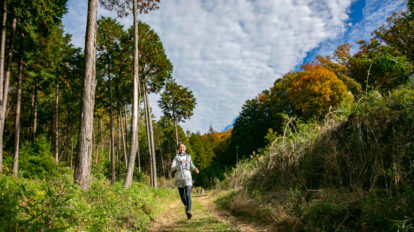 Tarzan Trails GPSデータ[小松]トレイル NO.780