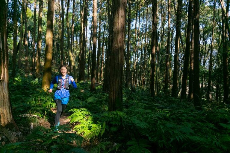 Tarzan Trails GPSデータ[横浜自然公園]トレイル NO.782