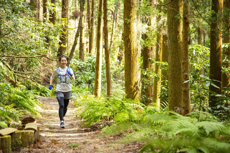 Tarzan Trails GPSデータ[逗子]トレイル NO.784