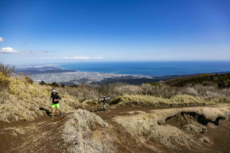 Tarzan Trails GPSデータ[箱根]トレイル NO.785