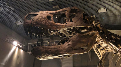 本当の恐竜の姿は誰にもわからないからこそ。 From Editors 2  No. 879