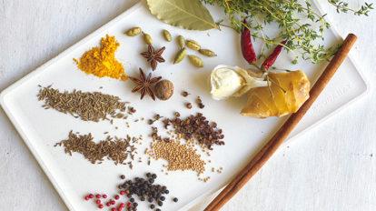 薬味とスパイスのきいた料理で、 梅雨から夏、過酷な時季を乗り切る!  クロワッサン 第一特集のご紹介 No.1023