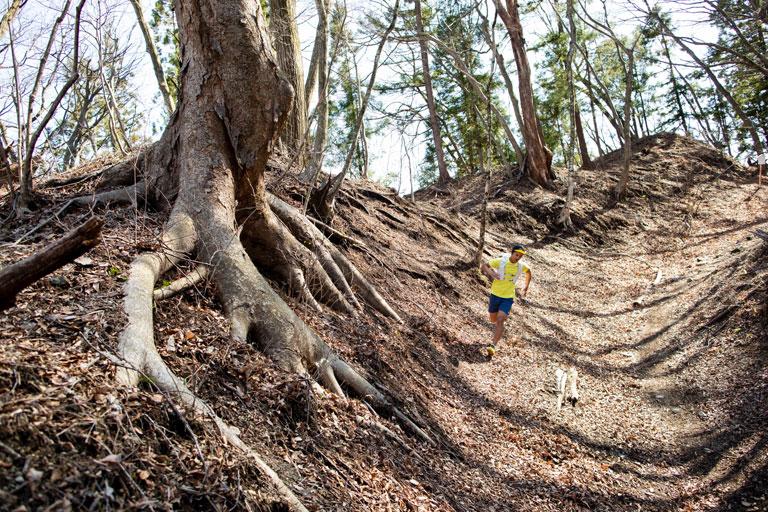 Tarzan Trails GPSデータ[碓氷峠]トレイル NO.789
